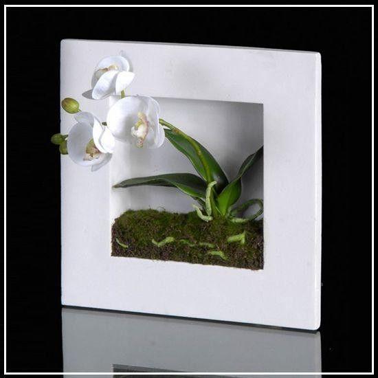mes photos fleurs page 5. Black Bedroom Furniture Sets. Home Design Ideas